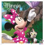 Minnie párna 35*35